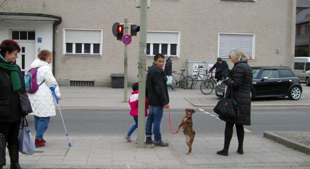 MVV / MVG Hunde von München 5