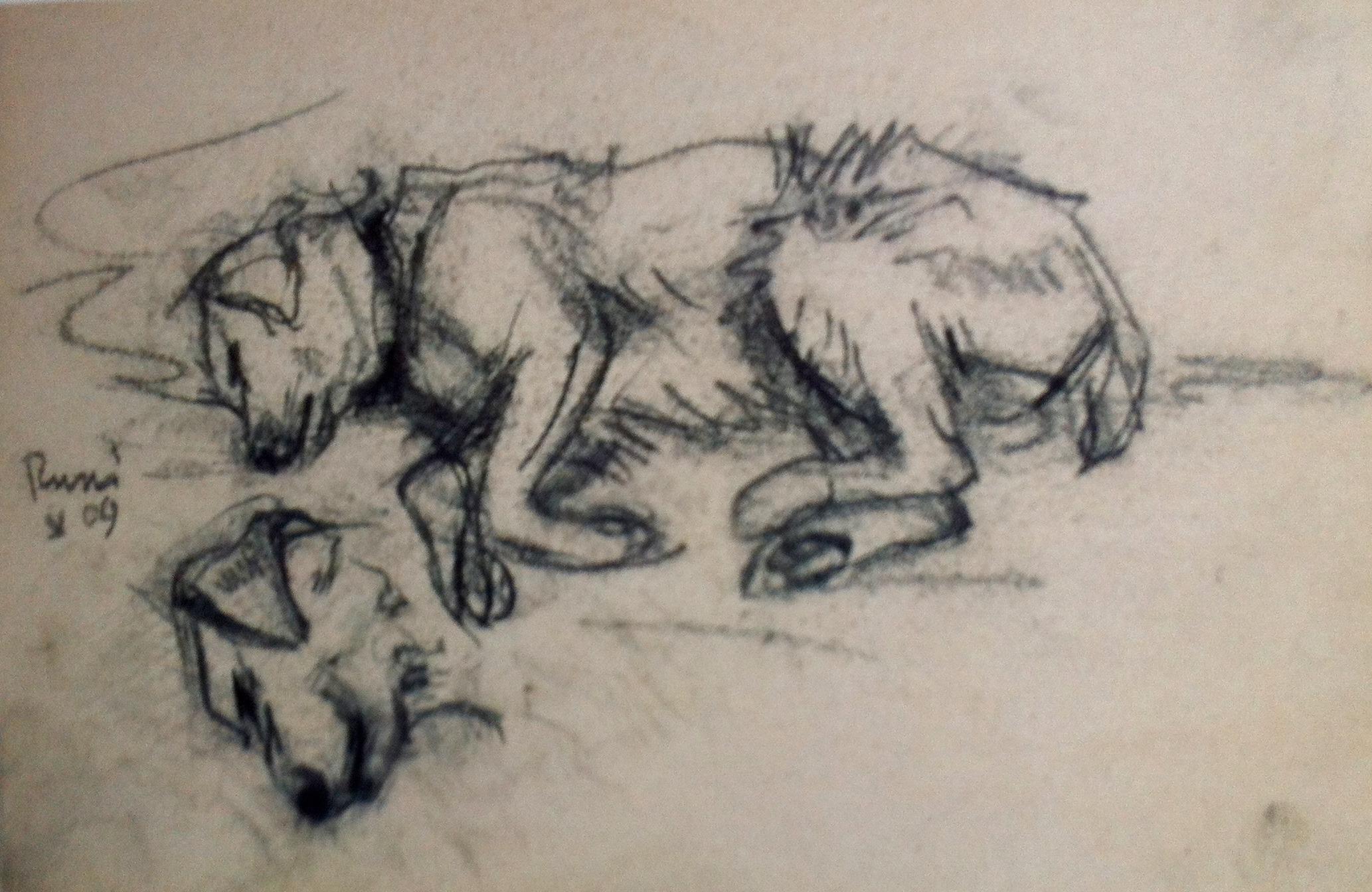 Liegender Hund (Russi), Franz Marc, 1909